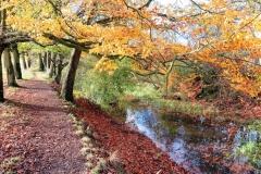 Canal in Selly Oak Park
